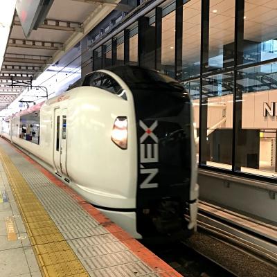 成田エクスプレス NEX